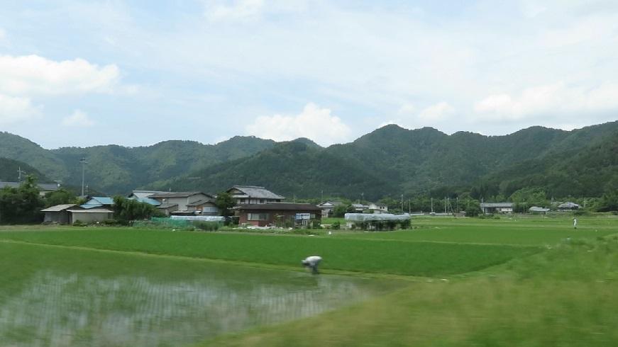 Photo_27